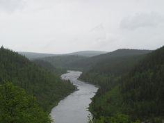 Naturaleza Salvaje Ivalojoki