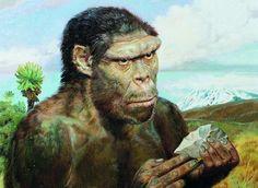 australopithecus artwork - Buscar con Google