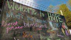 Hope Gardens blog - Chapel Hill