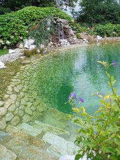 Waterfalls - Biotopes - Ponds - Garden design - Natural stone in all variants - Natural stone - Garten Design Pool - Piscinas Swimming Pool Pond, Natural Swimming Ponds, Natural Pond, Swimming Pool Designs, Natural Garden, Natural Salt, Pool Spa, Amazing Swimming Pools, Swimming Holes