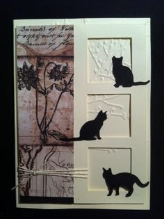 Window cats card