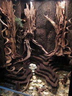 using xaxim to terraform a vivarium / paludarium Reptile Habitat, Reptile Room, Reptile Cage, Tarantula Enclosure, Reptile Enclosure, Paludarium, Snake Terrarium, Frog Tank, Baby Tortoise