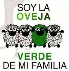 Soy la oveha verde..ji, ji, ji <3 #Cannabis ~PinDiv@~