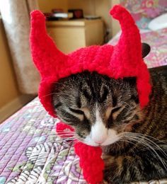 Devil Cat Hat, perfect for Halloween!!!