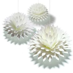 pop-up card dahlia http://www.paper-and-arts.com/