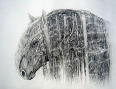 Equine Art, Australian Artists, Equestrian Style, Different Colors, Fantasy Art, Moose Art, Pride, Horses, Elegant