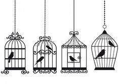 bird cages. I will have the bird out of the cage, though