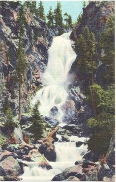 Vintage Colorado Postcard - Fish Creek Falls, Steamboat Springs (Unused)