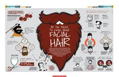 all%20you%20need%20to%20know%20about%20facial%20hair%20beards%20Infographic All You Need To Know About Facial Hair Beards Infographic