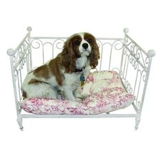 Antique White Iron Day Bed Design Pet Bed