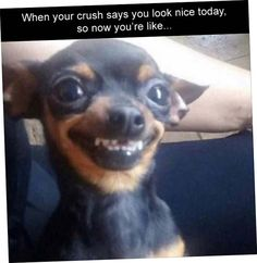 Today 43 Retro lol captions - LOL MANIA CLUB