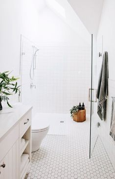 walk-in shower with no curb