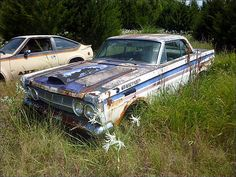 Barn Find Race Cars