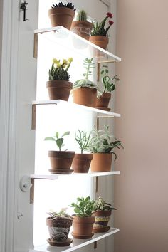 Inspiring Floating Window Plants Design Ideas 42 The design of a modern minimalist house tends to have limited land. However, the desire to have a comfortable home … Window Shelf For Plants, Plant Shelves, Kitchen Window Shelves, Garden Shelves, Herb Garden In Kitchen, Kitchen Plants, Garden Windows, Indoor Window Garden, Window Herb Gardens