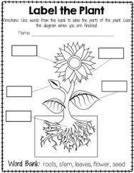 Image result for worksheet on plants around us for grade 2