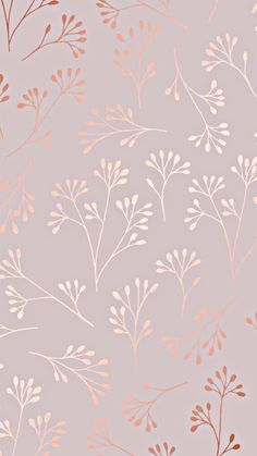 rose gold wallpaper backgrounds phone wallpapers w - Cute Wallpaper Backgrounds, Wallpaper Iphone Cute, Pretty Wallpapers, Cellphone Wallpaper, Aesthetic Iphone Wallpaper, Rose Wallpaper, Wallpaper Powerpoint, Phone Backgrounds, Galaxy Wallpaper