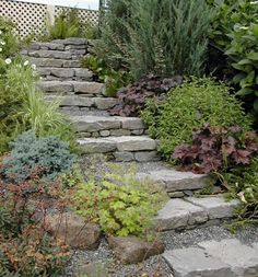 Outdoor stairs on slope