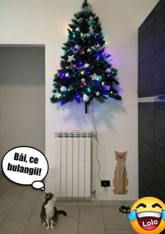 Billie Eilish, Haha, Christmas Tree, Humor, Abstract, Wallpaper, Holiday Decor, Memes, Funny