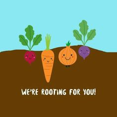 We're rooting for you.