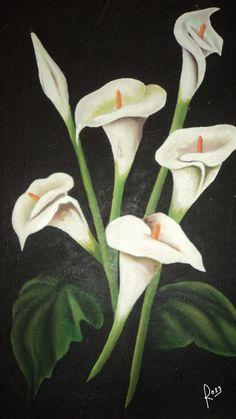 dibujar y pintar alcatraces - Buscar con Google Calla Lillies, Calla Lily, Lilies Of The Field, My Flower, Spring Flowers, Amazing Art, Cool Pictures, Decoupage, Art Projects