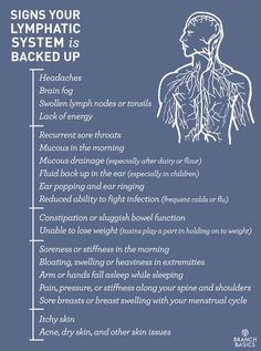 Antiviral remedies immune system Branch Basics Signs Your Lymphatic System is Backed Up Health And Wellness, Health Tips, Health Fitness, Fitness Hacks, Holistic Wellness, Health Recipes, Holistic Healing, Gut Health, Workout Fitness