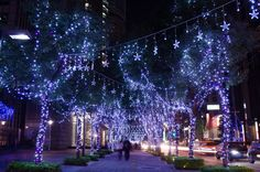 Christmas by Jackie Yeh, via 500px.......holiday lights.....