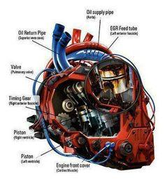 Gear head heart                                                                                                                                                                                 More