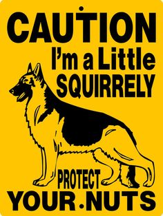 "GERMAN SHEPHERD Dog Sign 9""x12"" ""ALUMINUM"" 3051a"