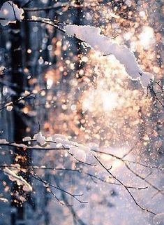 Брожу одна по декабрю, неспешно хлопья снега собираю, и лгу себе, что не люблю, и лгу себе, что забываю...                                                                                      ... А кому - то всегда всё равно... а кому - то всегда больнее...  в эту зиму я загадаю одно: чтоб мы были чуть - чуть сильнее...