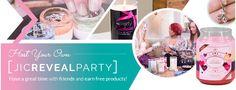 https://www.jicnation.com/store/candlesurprises/i/173/reveal-parties/