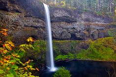 Silver Falls State Park is located near Silverton, Oregon and was about a 2.5 hour drive from Bend in good weather.