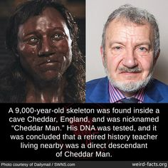 """Weird Facts A skeleton was found inside a cave Cheddar, England, and was nicknamed """"Cheddar Man."""" His DNA was tested, and it was concluded that a retired history teacher living nearby was a direct descendant of Cheddar Man. Wow Facts, Wtf Fun Facts, Fun Science Facts, Unbelievable Facts, Amazing Facts, Creepy Facts, Funny Memes, Jokes, Shocking Facts"""