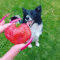Heart shaped strawberry ❤ #yummygoodness