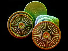 Diatoms, mostly Arachnoidiscus | Coloured electron microscop… | Flickr