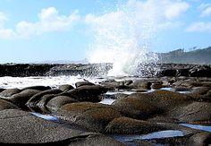 Wild Waves, Muriwai Beach, West Auckland, New Zealand by Geeta Uka