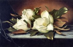 Giant Magnoliast MARTIN JOHNSON HEADE