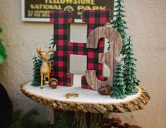 """Vintage National Park/Camping Themed 3rd Birthday """"Holden National Park"""""""