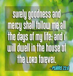 Psalm 23:6 KJV