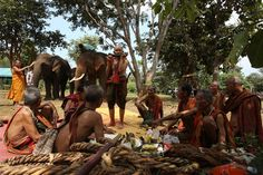 The tribal leaders and Elephant shamans have a wealth of knowledge to share about the elephants!! Volunteer with GoEco in Thailand with the Elephant Rescue and Conservation program - For more information visit the project page http://www.goeco.org/project/378/Volunteer_in_Thailand_Elephant_Rescue_and_Conservation#