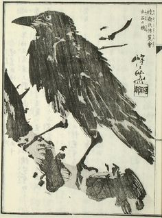 """A crow from Kyōsai Gadan(暁斎画談), or """"Kyōsai's Treatise on Painting"""" byKawanabe Kyōsai Kyosai's pictures of crows were very popular, he had a seal made that contained the phrase 'crows flying over every land' because because he had sold pictures of crows to people from so many different countries.  """"暁斎氏博覧會出品の鴉"""""""