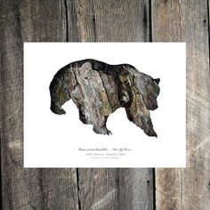Grizzly Bear Silhouette In Bark : Wall Art, Nature Theme Eco Decor, Woodland Animal Photography - Rustic Home and Lodge