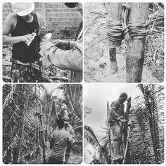 https://flic.kr/p/yxNSJ9 | Flashes of work on the camp property.  #morros #maranhao #brazil #brasil #nordeste #nordestebrasileiro
