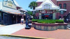lilyg1479St. Augustine, FL #staugustine