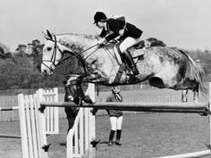 Google Image Result for http://imgc.artprintimages.com/images/art-print/columbus-the-horse-of-princess-anne-clearing-obstacale-in-jumping-section-of-windsor-horse-trials_i-G-30-3014-L36BF00Z.jpg