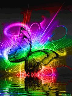 Colourful-Butterflies-butterflies-21803664-240-320.gif (240×320)