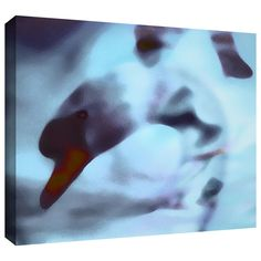 Swan Impression' by Dean Uhlinger Photographic Print Gallery-Wrapped on Canvas
