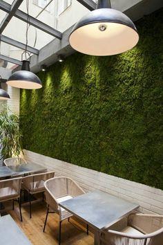 mousse vegetale dans les espaces public mur recouvert de mousse