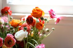 ranunculus// my favorite! Garden Inspiration, Color Inspiration, Garden Ideas, My Flower, Flower Power, Ranunculus Bouquet, Table Flowers, Planting Flowers, Greenery