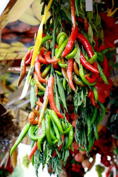 HOT PEPPER BUNDLE Stuffed Hot Peppers, Italian Recipes, Chili, Carrots, Colorful, Canning, Vegetables, Food, Design