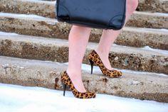 Leopard Heels: A Lily Love Affair Blog